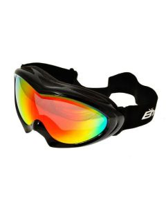 Birdz Ice Bird Ski Goggles Black/Revo ML