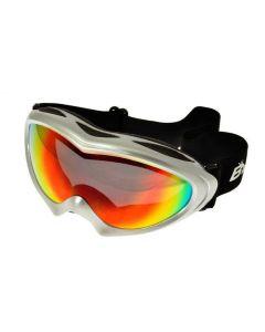 Birdz Ice Bird Ski Goggles Silver/Revo ML